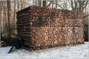 firewood9b