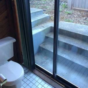 Toilet window