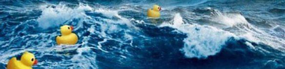 cropped-duck-spill-1.jpg